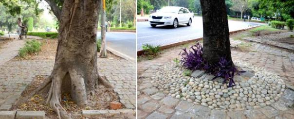 concretisation of trees