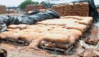 food grain drain
