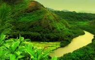 Green-contrast