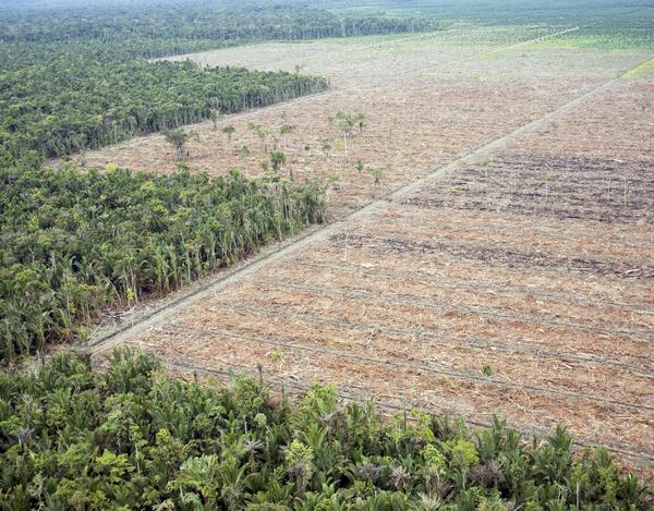 land taken for farming
