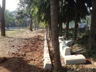 stone blocks being placed around each tree in violation of delhi hc order1