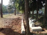 stone blocks being placed around each tree in violation of delhi hc order1