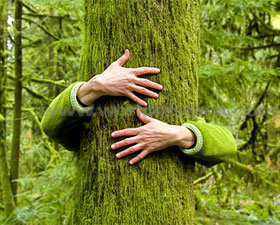 chipko-movement-tree-hugging